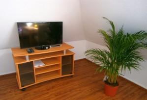 Doppelzimmer: Flachbild-TV